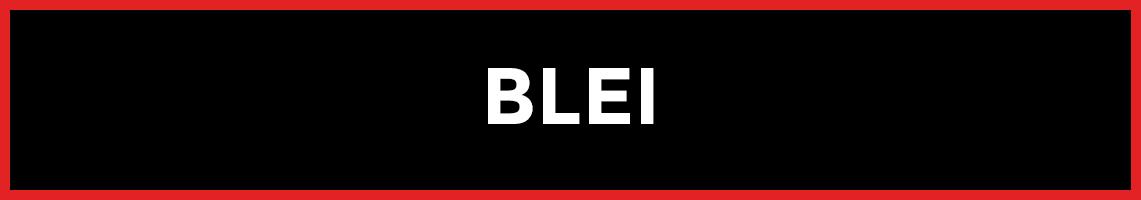 07_pk_BLEI